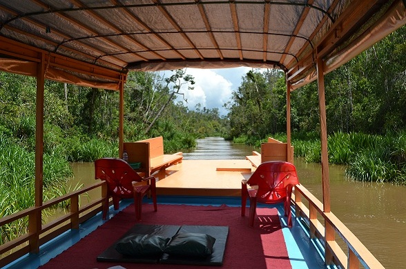 kalimantan tours, orangutan trip, mahakam river, tanjung puting, kutai park, derawan,