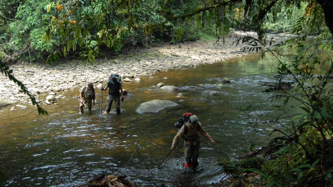 cross borneo jungle adventure trek expedition trip tour guide kalimantan indonesia