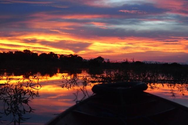 danau sentarum orangutan wildlife kalimantan tours borneo indonesia