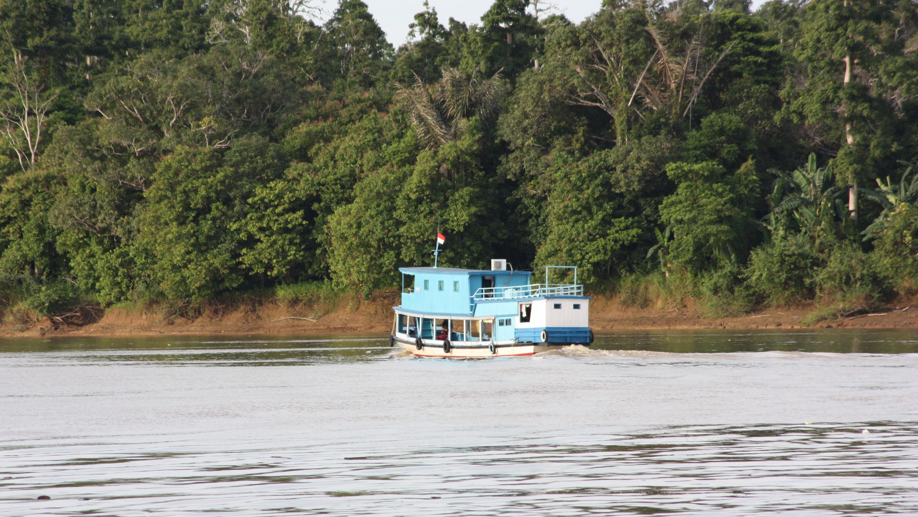 cruise the mahakam river explore trip tours