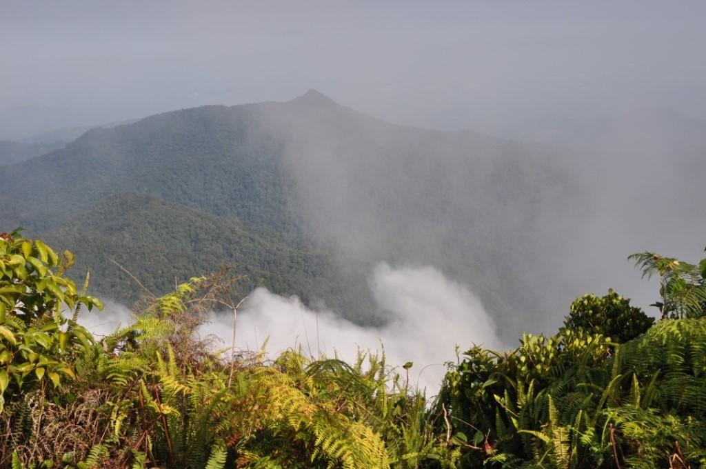 meratus mountain jungle trek guide borneo kalimantan