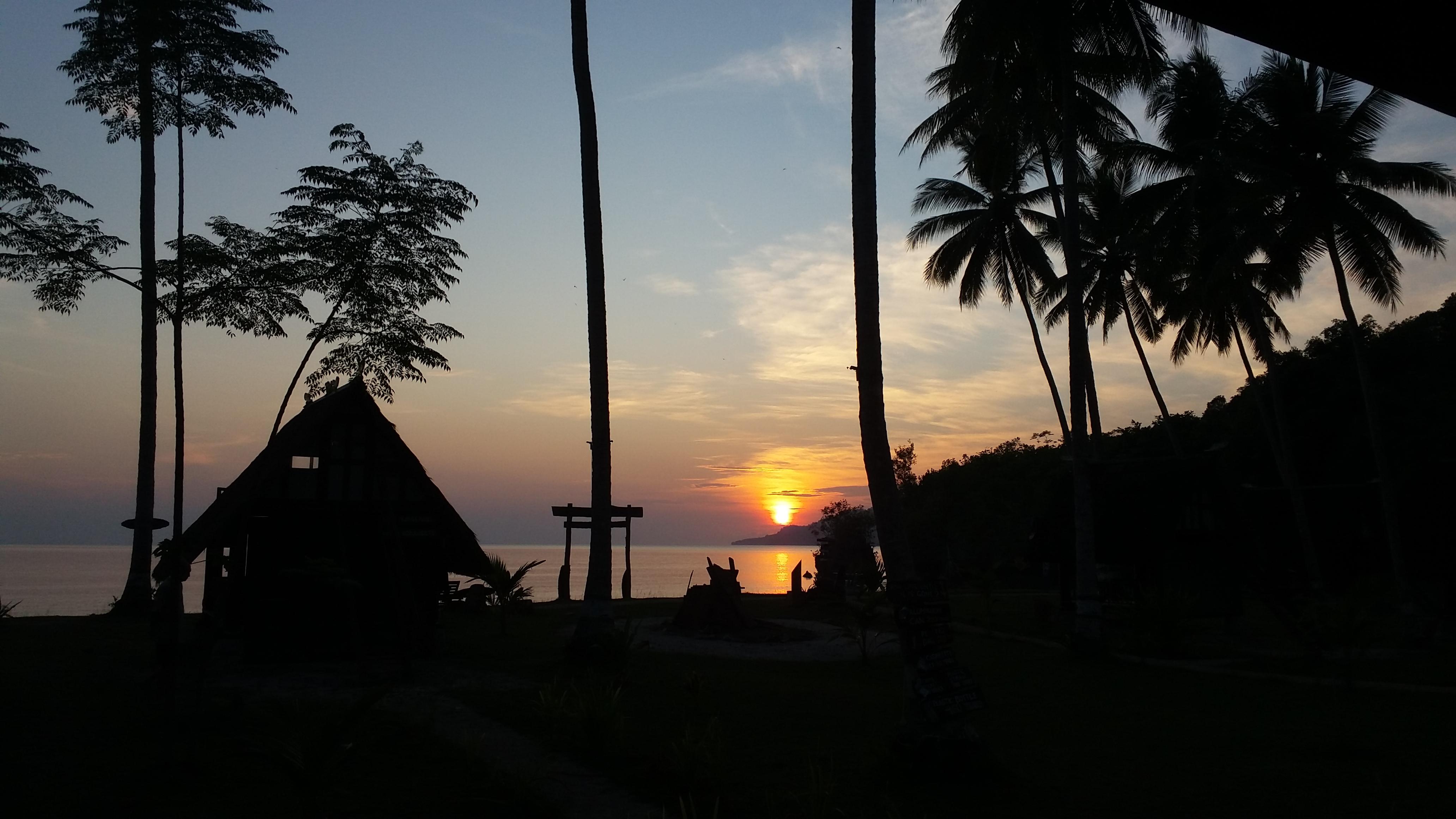 kalimantan wildlife diversity tour orangutan wildlife dayak culture, rain forest jungle trek guide trips borneo indonesia